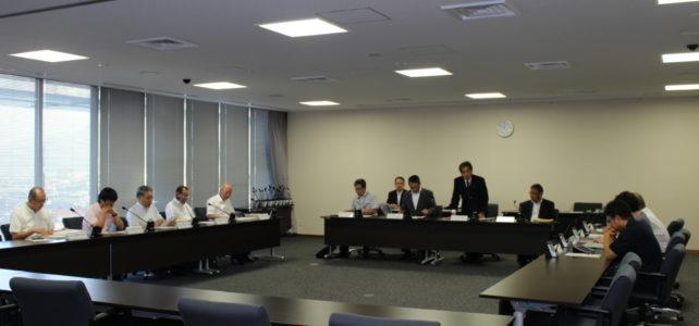議会改革・調査特別委員会(H30.7.25)