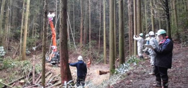 森林・林産業対策協議会(R2.1.24)